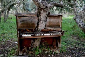 a5cad10f946a7142eec79eb4d841245f--old-pianos-the-piano